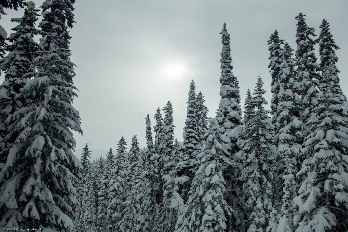 Beautiful Manning Park
